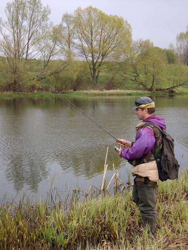 Экологическое ЧП на Упе: кто и чем отравил рыбу